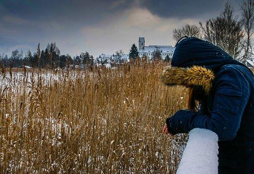 Spring Lake, Bad Buchau, Pose, Winter