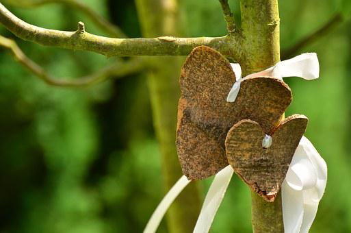 Heart, Love, Bark, Tree, Wedding, Valentine's Day