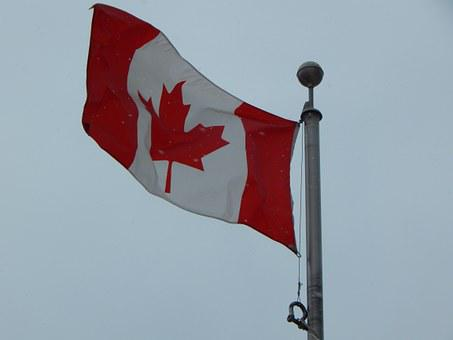 Canadian Flag, Winter, Snowing, Canada, Flag