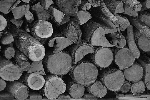 Logs, Wood, Heating, Wood Pile, Cup, Sawn, Heap, Tree