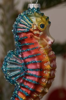 Seahorse, Kitsch, Cheesy, Sparkle, Sparkling, Colorful