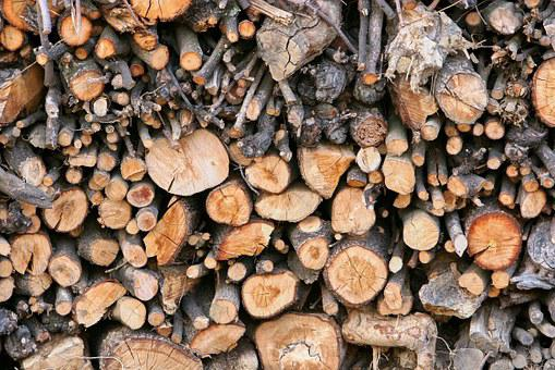 Wood, Timber Industry, Firewood, Holzstapel