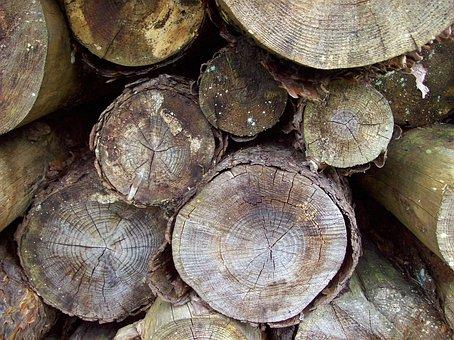 Woodstack, Logs, Logpile, Pile, Timber, Wood, Stack
