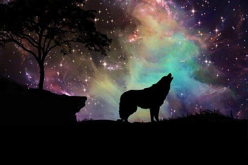 Galaxy, Nebula, Stars, Digital Art, Wolf, Silhouette