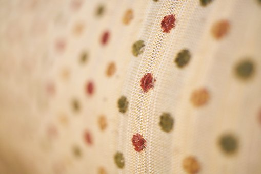 Texture, Textile, Softness, Macro, Pattern, Fabric