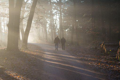 People, Forest, Outside, Bright, Sunshine, Sun Rays