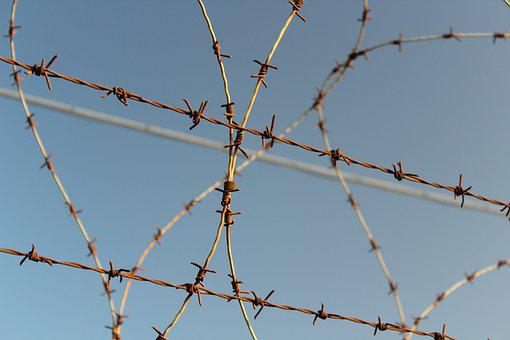 Barbed Wire, Wire, Security, Thorn, Close, Fence