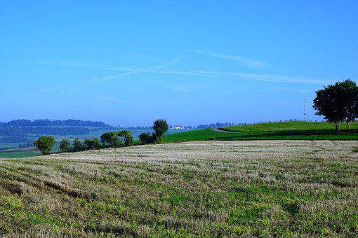 Field, Meadow, Emmingen, Liptingen, Tuttlingen
