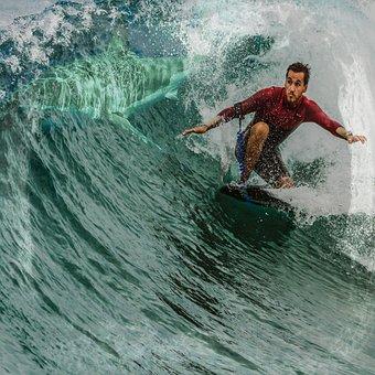 Shark, Surfer, Surfing, Wave, Ocean, Water, Summer