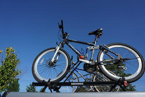 Bike, Green, Cycle, Bicycle, Outdoor, Summer, Sport