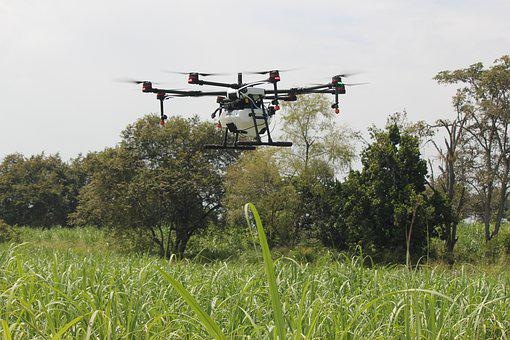 Drone, Fumigation, Agriculture, Spray, Fine Drop