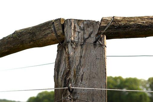Wood, Pillar, Fencing