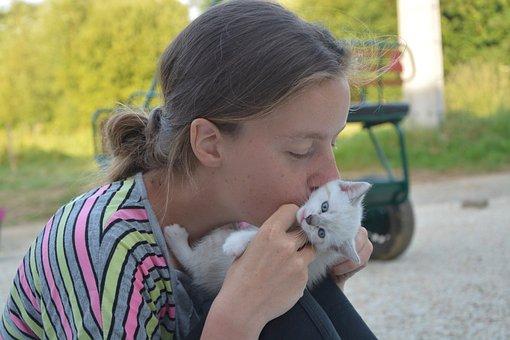 Kiss, Kisses, Kitten, Girl, Young Woman, Female