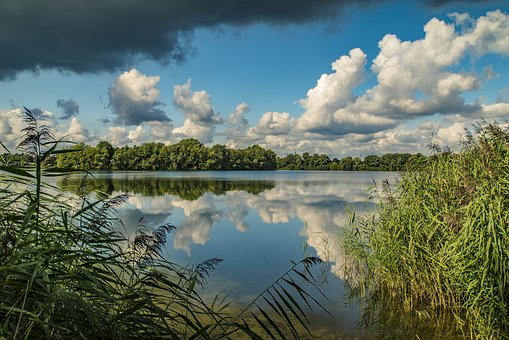 Lake, Water, Nature, Reflections, Sky, Landscape, Green