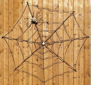 Wooden Wall, Spider, Cobweb, Decoration