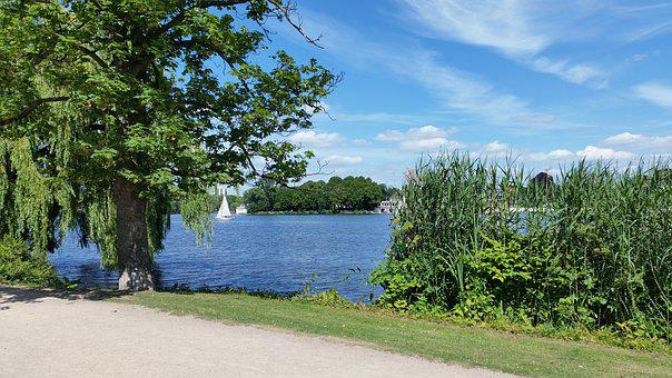 Hamburg, Alster, Water, Sailing Boats, Sky, Landscape