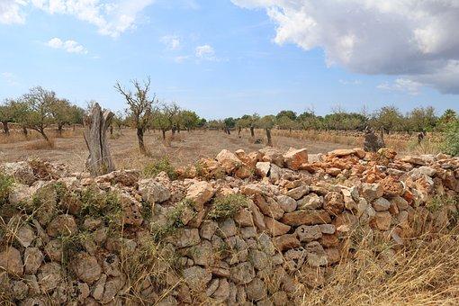Mallorca, Landscape, Stone Wall, Drywall