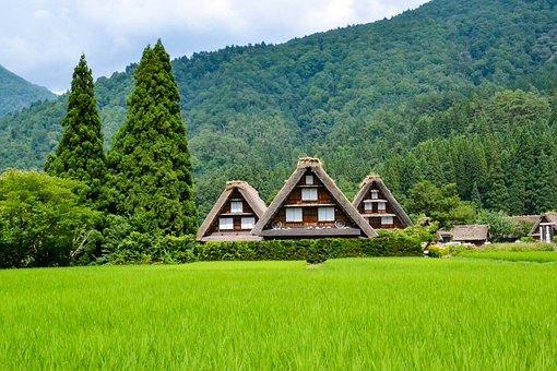 Japan, Landscape, Japanese, Landmark, Mountain, Tree