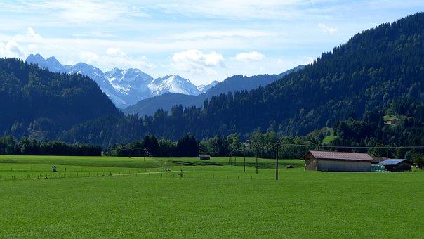 Allgäu, Mountain Panorama, Meadow, Green, Mountains