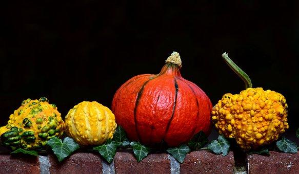 Pumpkin, Gourd, Hokkaido, Yellow, Orange, Old Masonry