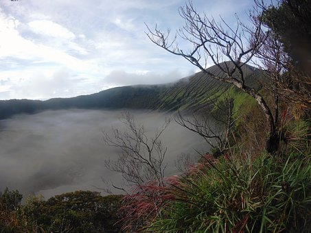 Mountain, Fog, Trees, Grass, Philippines, Old Crater