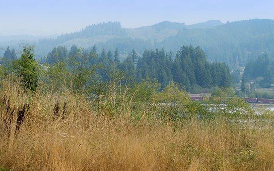 Rural, Oregon, Coast, Toledo, Yaquina, River, Serene