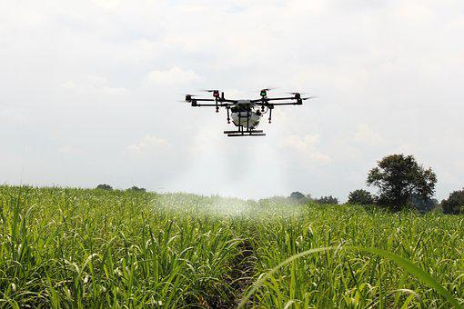 Spraying Sugar Cane, Sugar Cane, Drone Farm, Spray