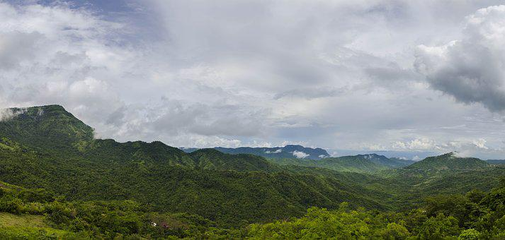 Forest, Pa, Petchaboon, Thailand, Tree, Green, Mountain