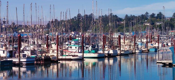 Oregon, Coast, Newport, Marina, Ocean, Pacific, Water