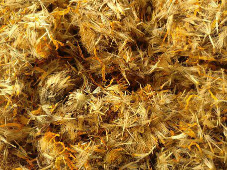 Arnica Montana, Arnica, Dried, Herb, Phytotherapy