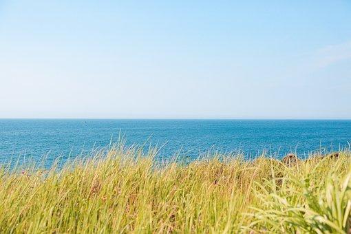 Jeju, Jejudo, Jeju Island, Sea, Beach, Color, Landscape