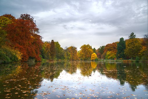 Lake, Autumn, Tree, Landscape, Park, Water, Red, Color