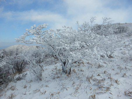 The Winter Light Production, Sobaeksan