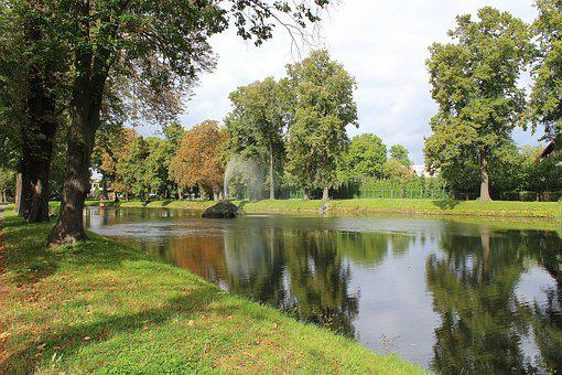 Landscape, Nature, Pond, Tree, View, End Of The Summer