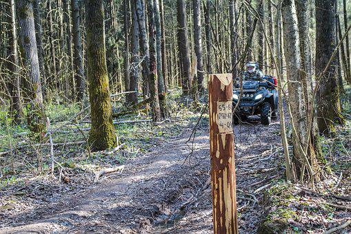 Atvs, Atv, Rover, Forest, Trip, Ride, Off-road, Summer