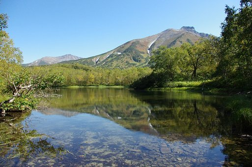 Forest Lake, Mountains, Forest, Nature, Reflection
