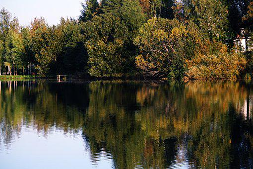 Autumn, Lake, Beauty, Forest, Golden Autumn