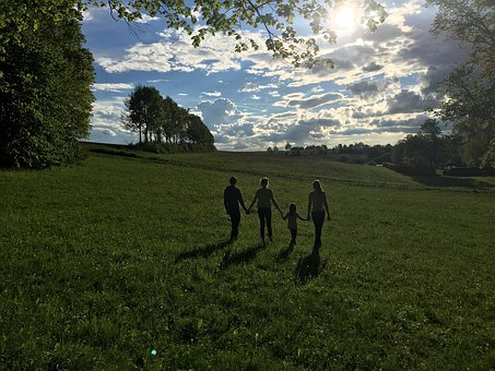 Children, Friends, Sun, Light, Shadow, Meadow, Trees