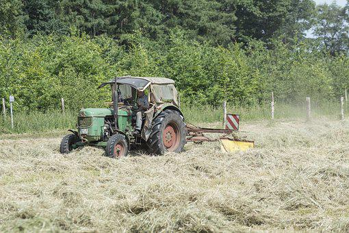 Haymaking, Agriculture, Hay, Agricultural, Countryside