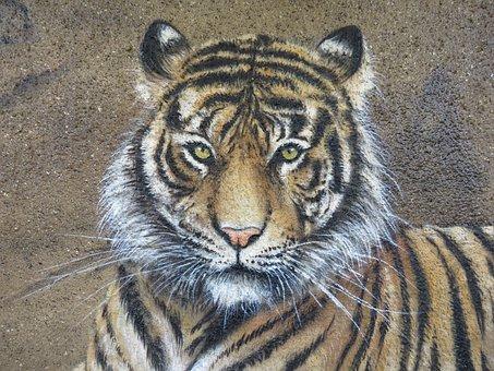 Tiger, Wall Art, Wall, Zoo, Berlin, Lichtenberg