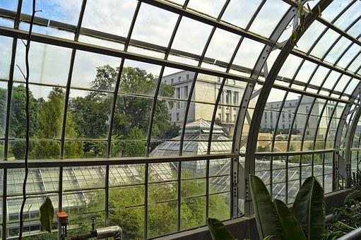 Conservatory, Greenhouse, Green House, Hothouse, Plants