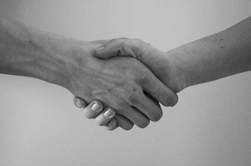Hand, Greeting, Agreement, Hand Shaking