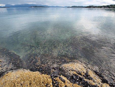 Sea, Smooth, Mirroring, Coast, Norway, Scenic, Stone