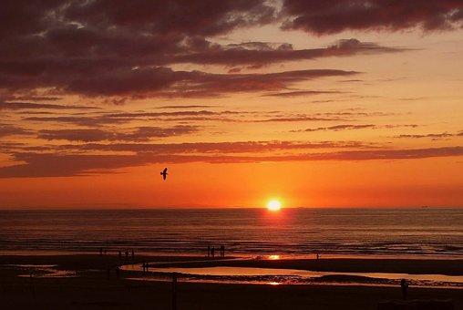 Sea, Beach, Water, Wave, Sun, Sunset, Abendstimmung