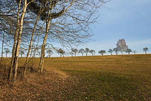 South Bohemia, Landscape, Early Spring, Nature, Trees