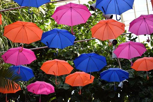 Umbrellas, Colorful, Weather, Phipps Conservatory