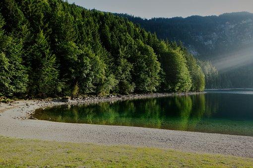 Eibsee, Abendstimmung, Beach, Forest, Mountain Lake