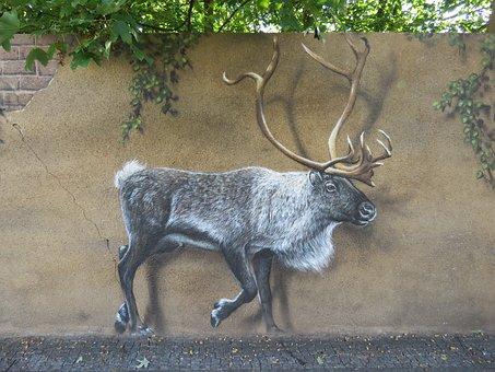 Moose, Wall Art, Wall, Zoo, Berlin, Lichtenberg