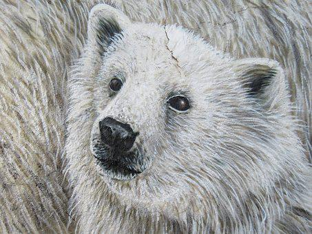 Polar Bear, Wall Art, Wall, Zoo, Berlin, Lichtenberg