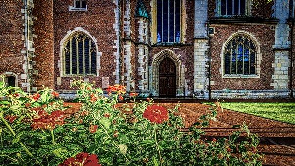 Castle, Flowers, Entry, Sunset